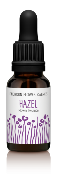 Findhorn - Hazel 15ml