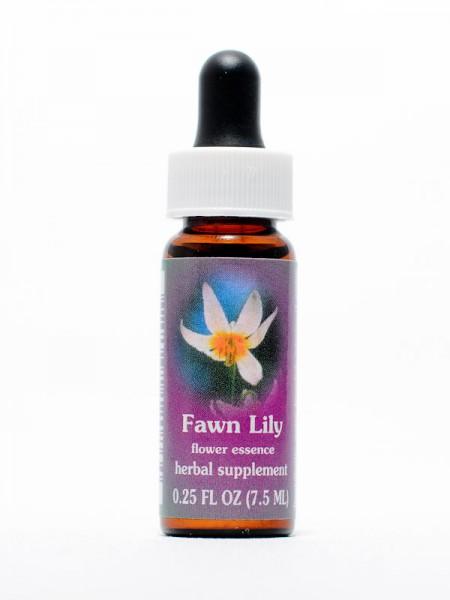 F.E.S. - Fawn Lily