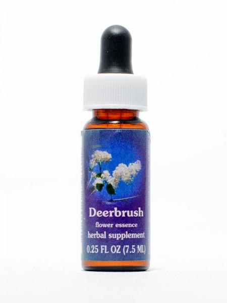 F.E.S. - Deer Brush (Säckelblume)