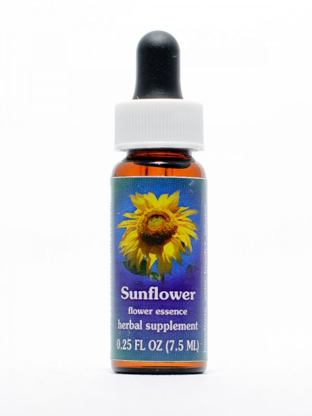 F.E.S. - Sunflower (Sonnenblume)