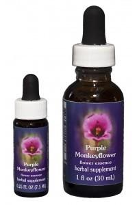 F.E.S. - Purple Monkeyflower