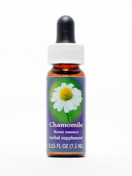F.E.S. - Chamomile (Kamille, Hundskamille)
