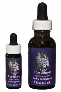 FES - Rosemary
