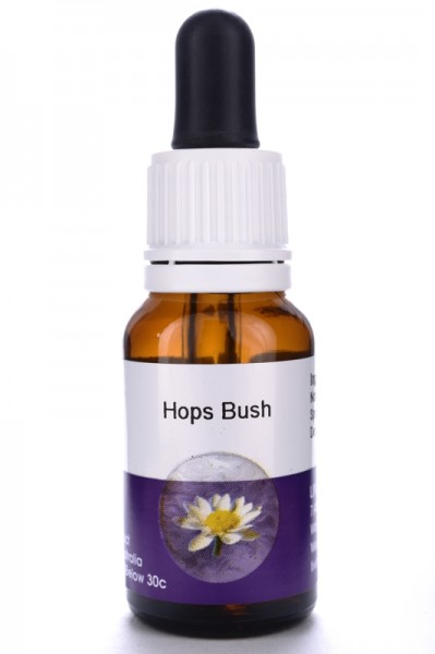 Hops Bush 15ml